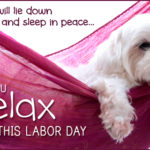 It's Labor Day….Time To Chill Out